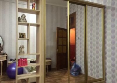 shkaf-kupe-odessa (6)